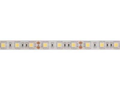 LED strip 12Volt iP61 koudwit
